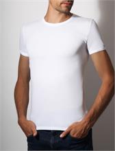 BODY COTTON WHITE | Escapade Fashion