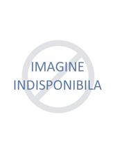 MICKEY PRINT YELLOW | Escapade Fashion