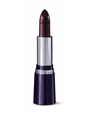 LIPSTICK VINETTE- AUBERGINE 3.4 GR | Escapade Fashion
